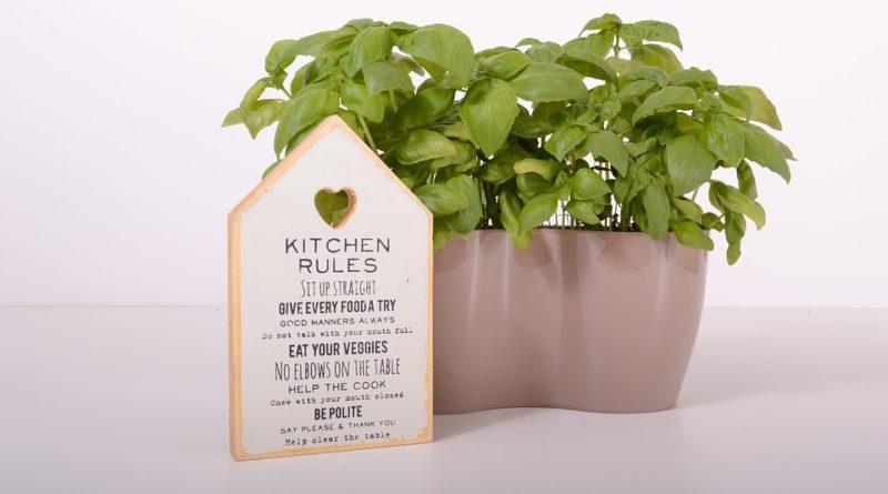 I bazalka a jiné bylinky ze supermarketu můžou vydržet dlouho. Víme, jak na to